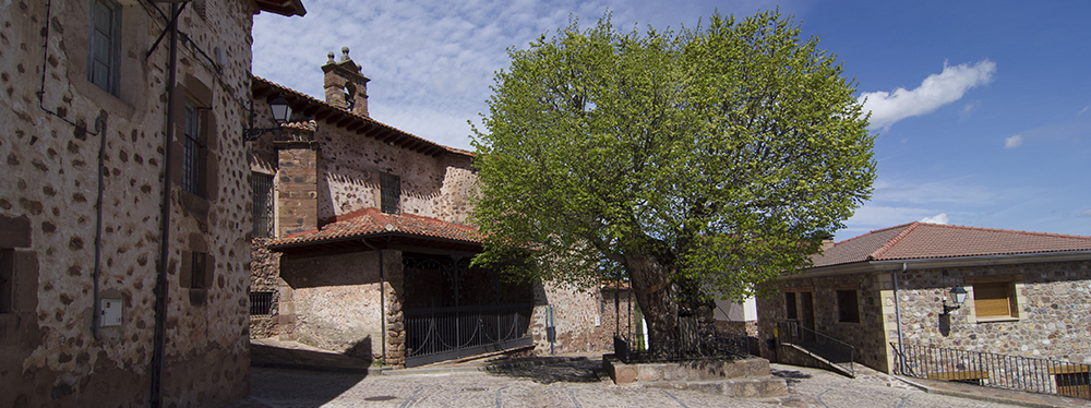 ElRasillo with church and tree