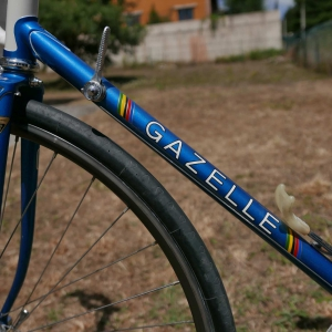 Gazelle Champion Mondial - 20