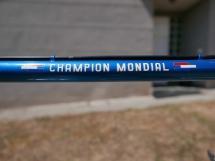 Gazelle Champion Mondial - 4